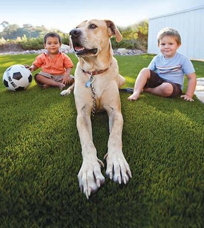Pet Safe and Kid Friendly Artificial Turf, Inland Empire
